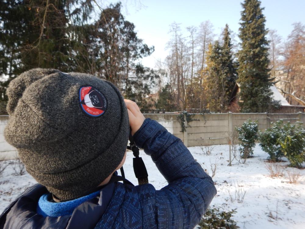 Ptačí zima