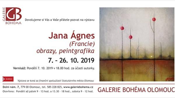 Jana Ágnes: obrazy, peintgrafika
