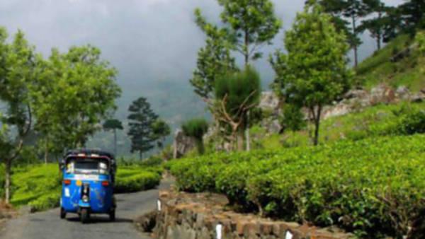 Za čajem na Srí Lanku