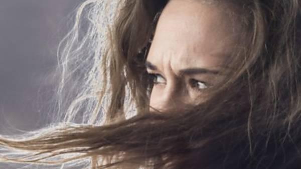 Na Větrné hůrce - ONLINE