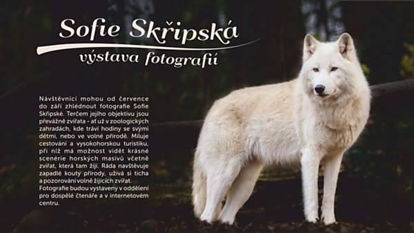 Výstava fotografií Sofie Skřipské