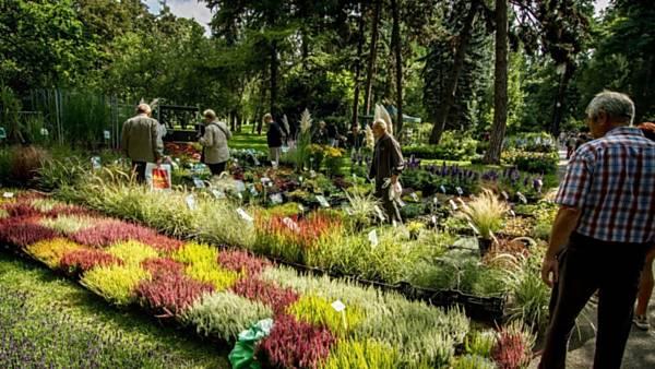 Podzimní zahradnické trhy 2020