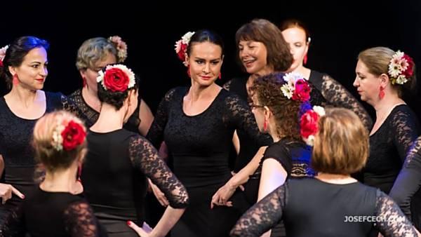 <strike>Taneční vystoupení flamenco</strike> - ZRUŠENO