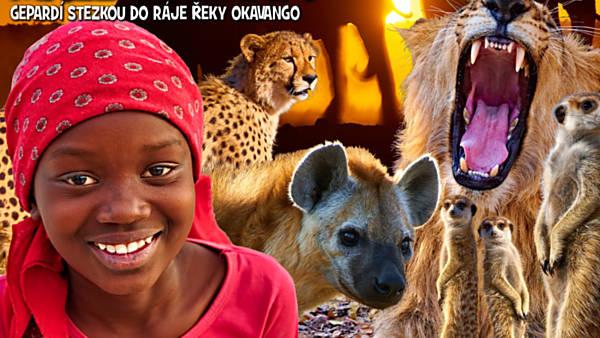 Velké safari a malé surikaty