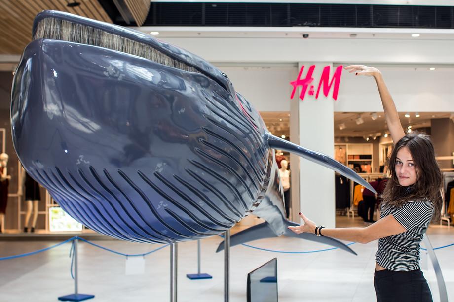 Výstava Obři oceánů sklidila úspěch.