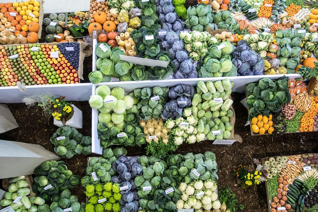 Podzimní Flora ve znamení zeleniny. Člověk by ani nevěřil, kolik barev může mít hlávka zelí...