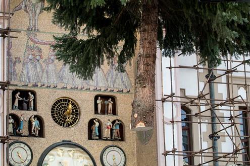 Strom na náměstí dorazil v neděli ve čtvrt na dvanáct. Krátce po půl už byl usazen.