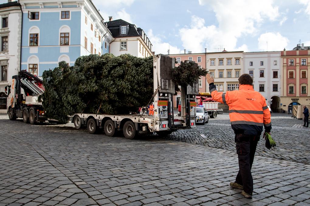 Cesta vánočních stromů na Horní náměstí bývala v minulosti dosti komplikovaná. Musely se zvedat troleje, často bránila v cestě zaparkovaná auta... Letos ale vše proběhlo hladce.